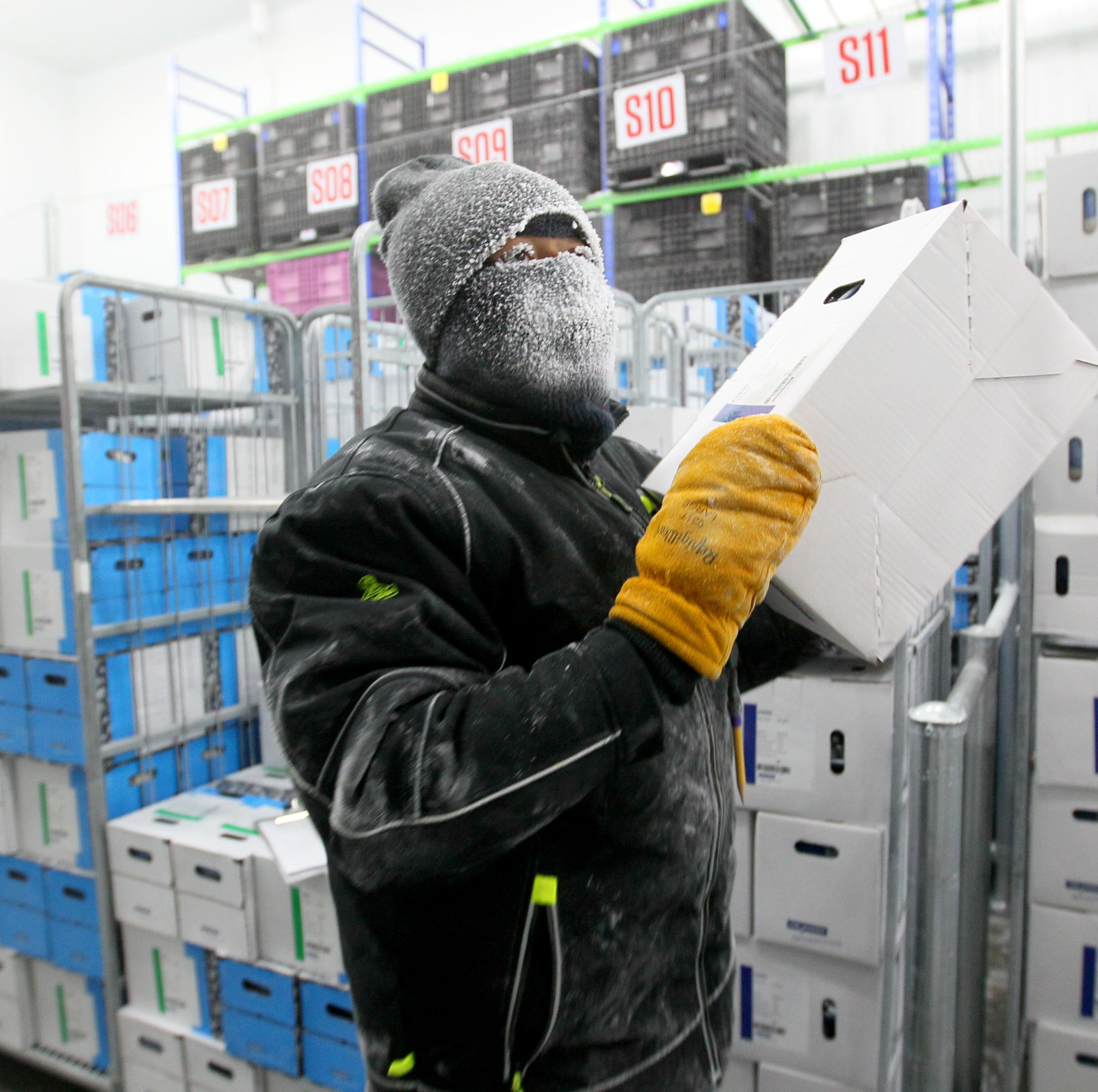 Kenny Jolliff, a freezer operator, picks orders of frozen bacteria cultures Tuesday inside a super freezer at Chr Hansen in New Berlin. Workers, dressed in double-lined suits, stay in the freezers for about two hours before taking a 20-minute break to warm up. The freezer is kept nearly 70 degrees below zero to store bacteria cultures used to make cheeses, yogurts and other dairy products, as well as wine and meat products. The company is in the process of adding 19,000 square feet of super freezer space. When finished, it will be one of the largest such freezers in the world, according to the company.