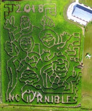 "A drone took this photo of ""The Incornibles,"" this year's corn maze at Basse's Taste of Country Farm Market in Colgate."