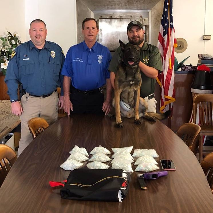 Mangham police seize 10,000 Ecstasy tablets in traffic stop