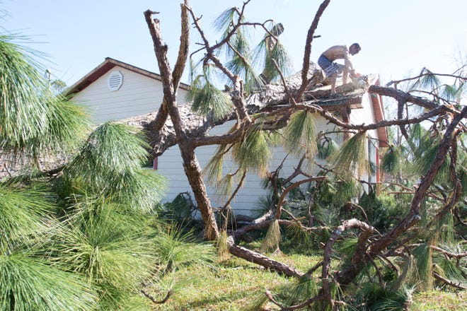 Jack Certalich removes a fallen tree from his house Tuesday, Oct.16, 2018, in Panama City, days after Hurricane Michael ripped through the area.