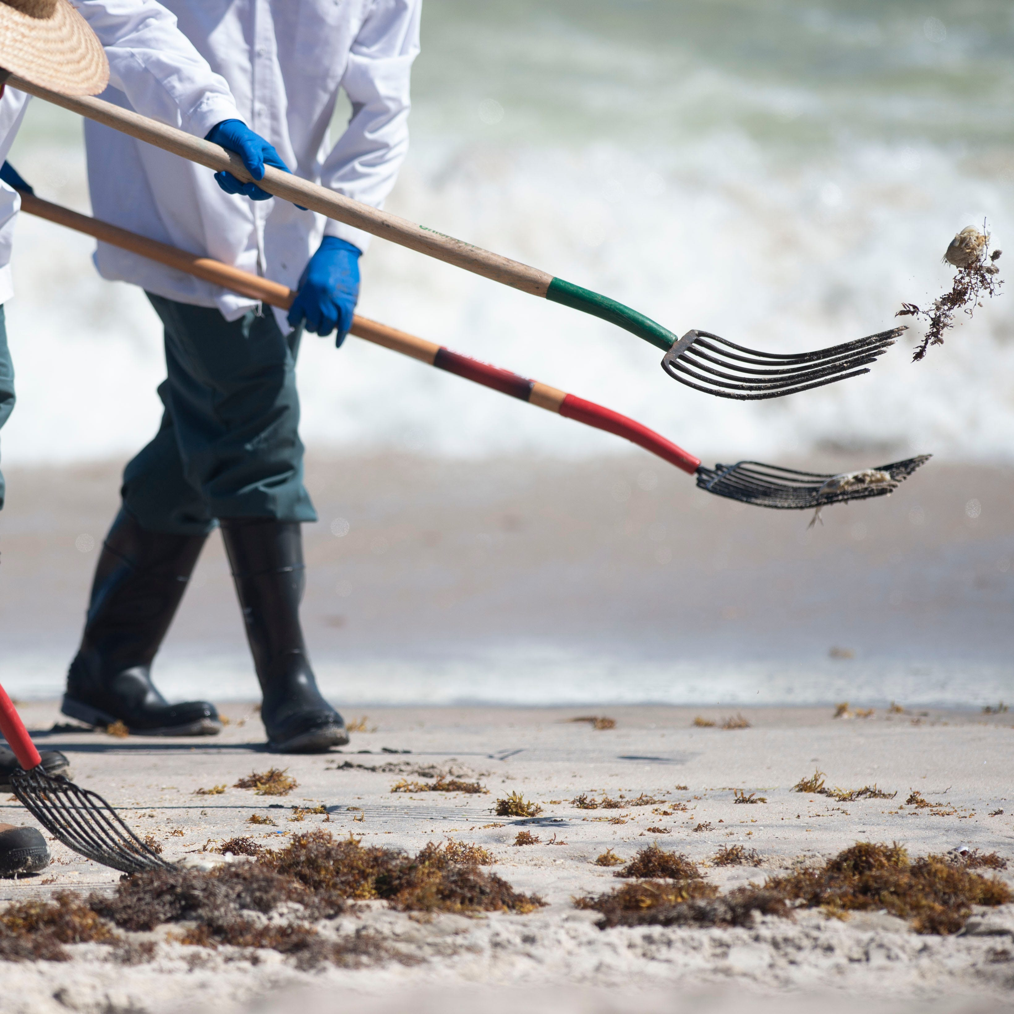 Red tide closes beaches in Vero Beach, Indian River County, Sebastian Inlet State Park | Map