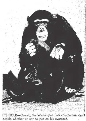 A photo of Oswald from Jan. 26, 1961.
