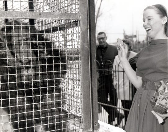 Above, a March 14, 1965, El Paso Times photo: Mrs. Joyce Gothard, secretary in City Parks and recreation department, is delighted when Neil, a chimpanzee at Washington Park Zoo, does a series of tricks at her verbal command..? Neil was given to the zoo on condition he never be sold or traded.