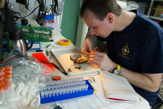 Biological and geological samples collected during dives are processed in the ship's wet lab before being placed in storage. Geological samples are sent for permanent storage and study at the University of Rhode Island, Graduate School of Oceanography. Biological samples reside at Harvard's Museum of Comparative Zoology.