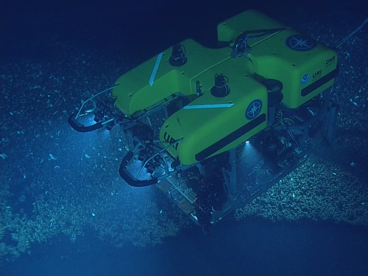 The remotely operated vehicle or ROV Hercules is able to explore down to a depth of 4,000 meters. It works in tandem with ROV Argus. Both are piloted from the control van, where members of the corps of exploration stand four-hour watches.