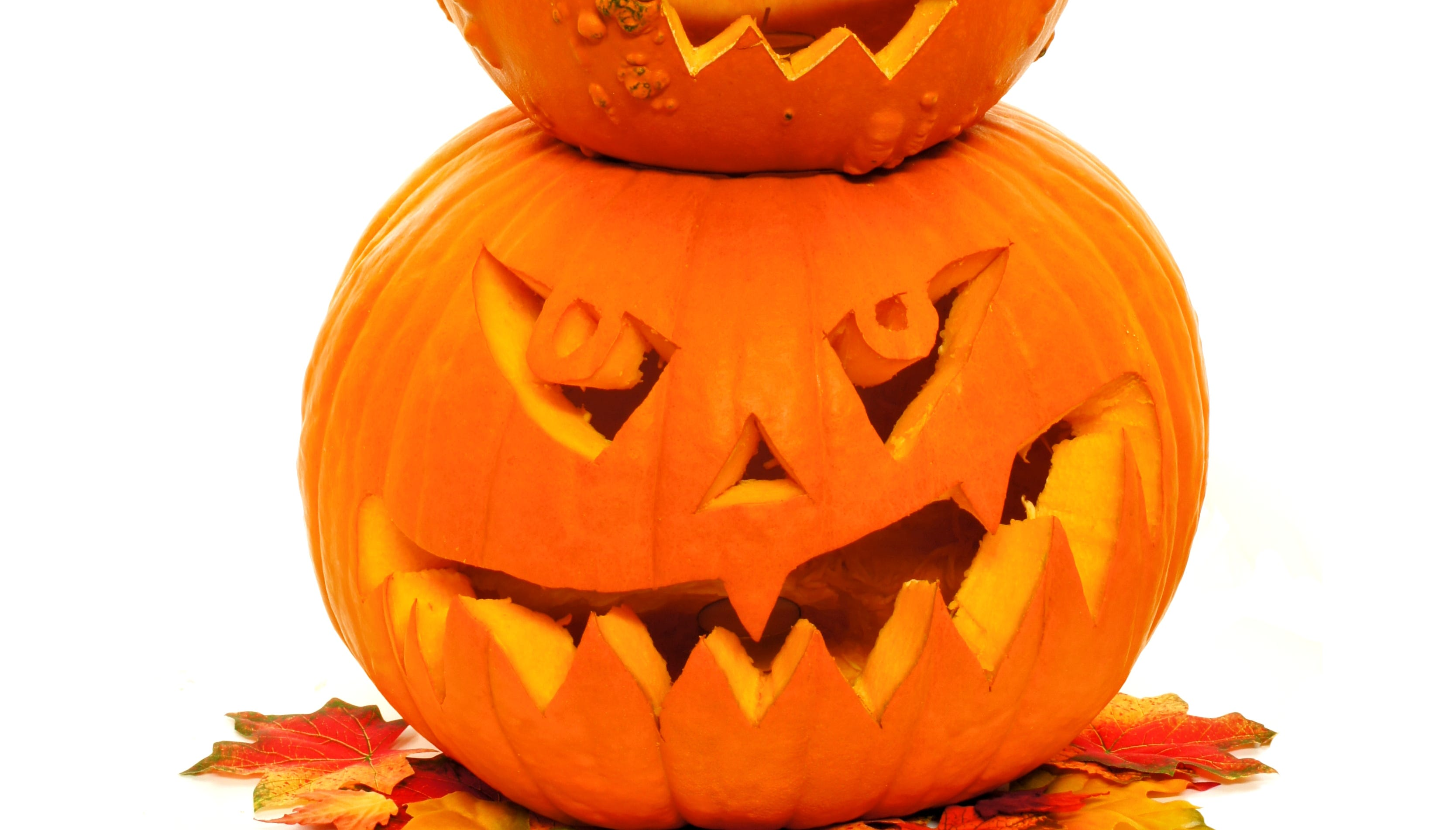 6 uses for pumpkin guts and jack o lanterns after halloween