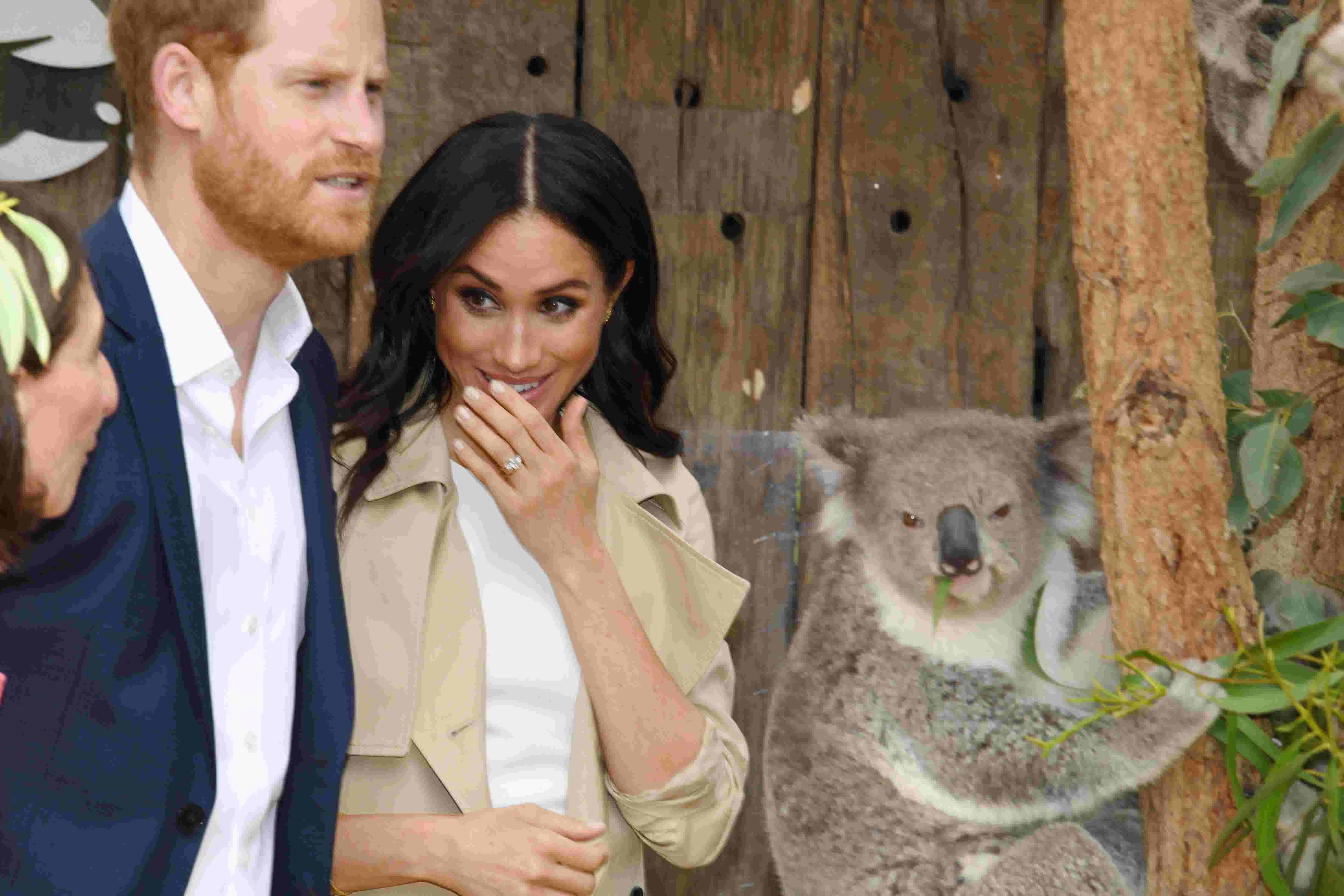 cc96e1d4bce4 Pregnant Duchess Meghan plays with koalas on royal tour in Australia