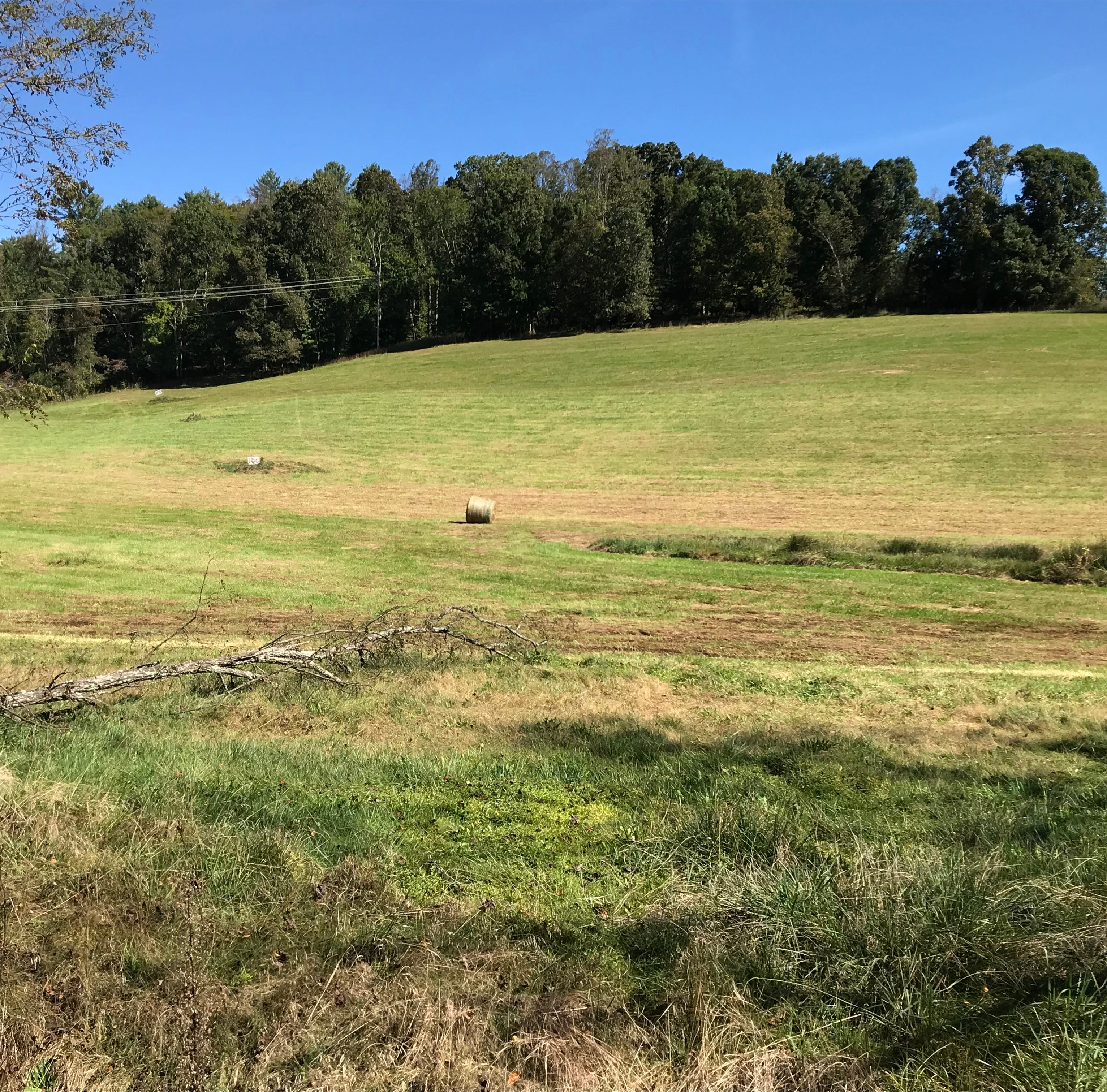 From driving range to subdivision: plans for Mars Hill development move forward