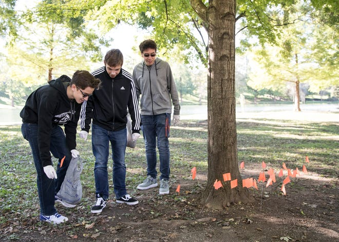 From left, Cameron Tisdale, Andy Blum, and Justin Wood find more cigarette butts near a tree already flagged by other students in Yoctangee Park Wednesday morning as part of a project to show the environmental impact of smoking on the park.
