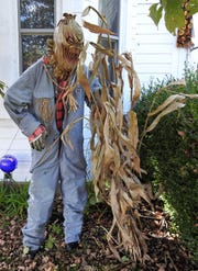 A ghoulish scarecrow on the front lawn greets visitors to the home of Shelly Lillibridge overlooking Roscoe Village.