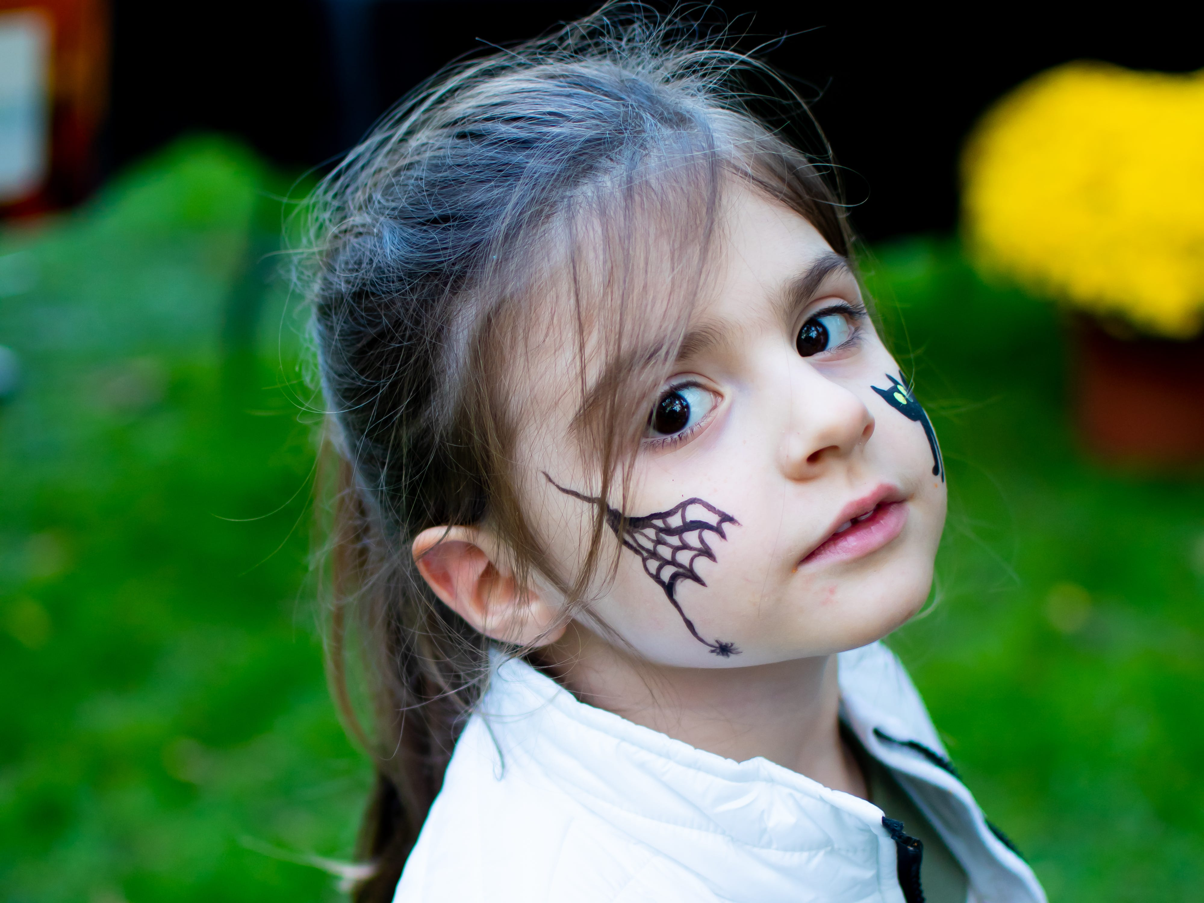 Chelsea Miller, 4, of Waukee got her face painted on Tuesday, October 16, 2018 for the Waukee Area Chamber of Commerce fall after hours party at Timberline Campground in Waukee.