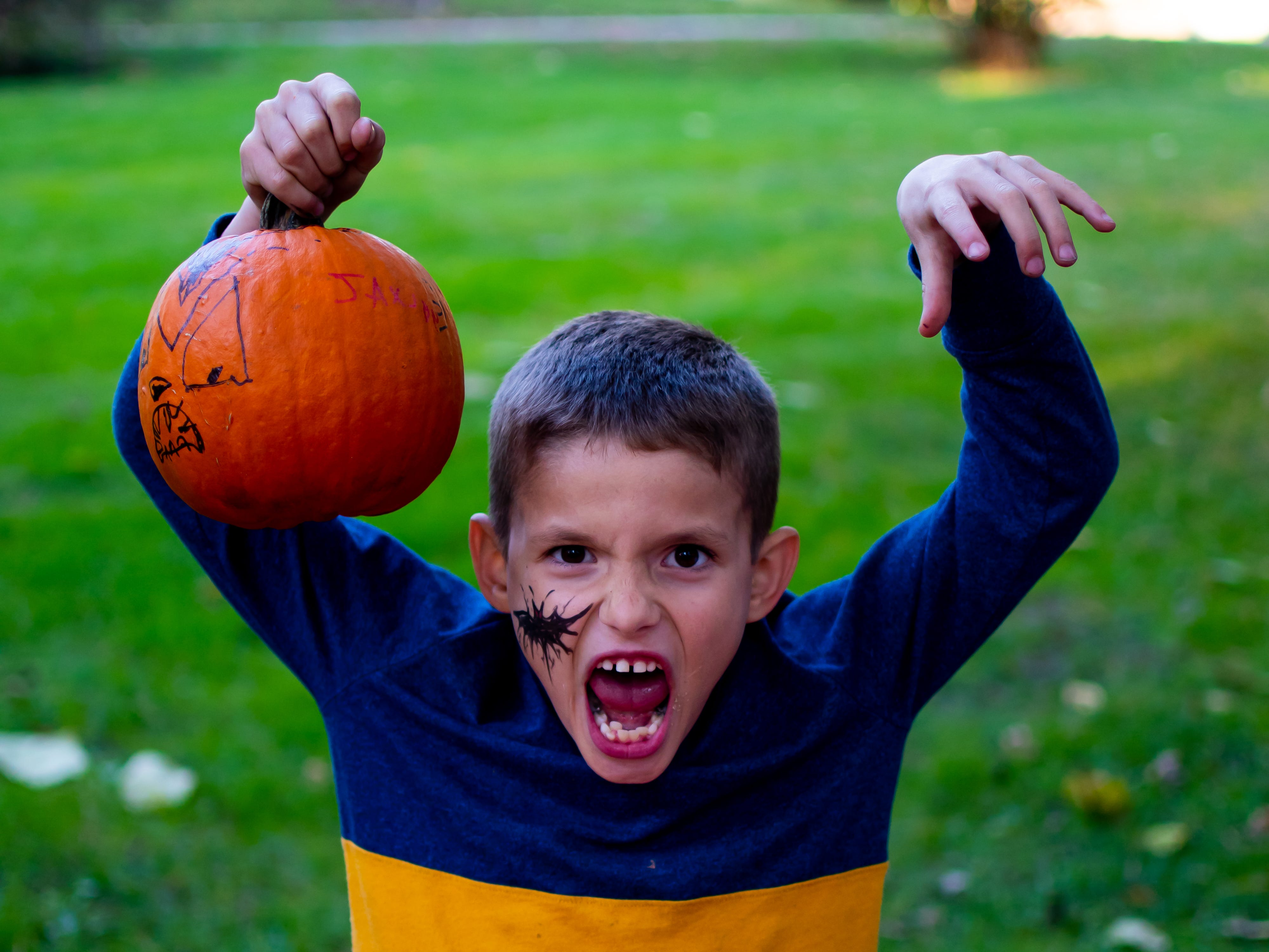 Jaxson Gibbons, 7, of West Des Moines poses with his pumpkin on Tuesday, Oct. 16, 2018 for the Waukee Area Chamber of Commerce fall after hours party at Timberline Campground in Waukee.