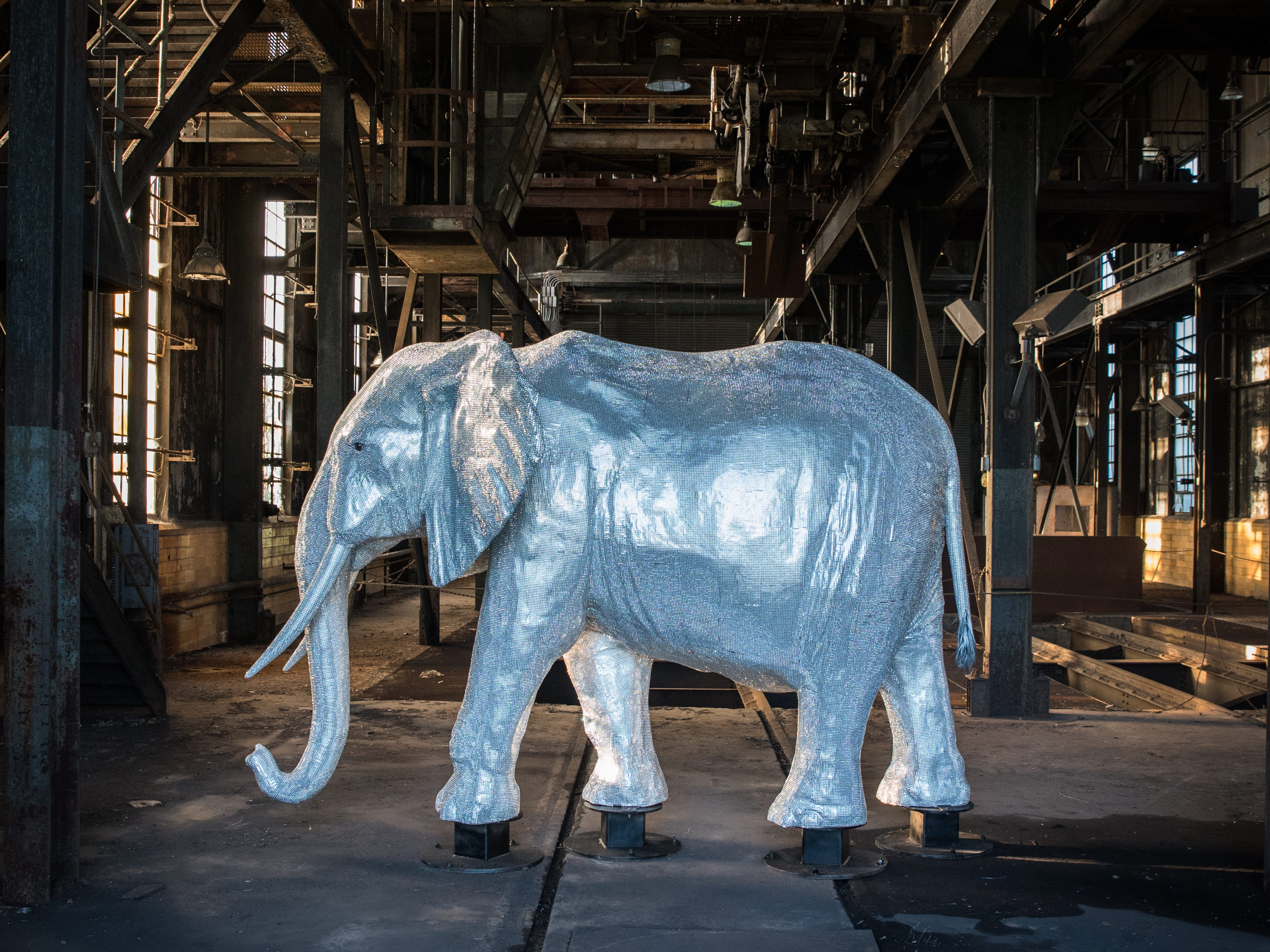 """""""Limited Edition"""" is a life-size model elephant covered with more than 350,000 aurora borealis rhinestones, and weighs 600 pounds."""