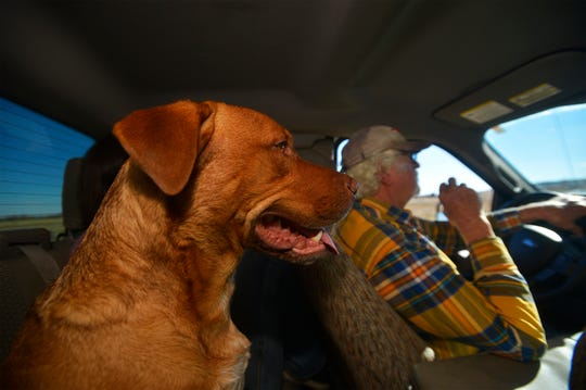 Mac White rides around his ranch, with one of his dogs along for the ride.