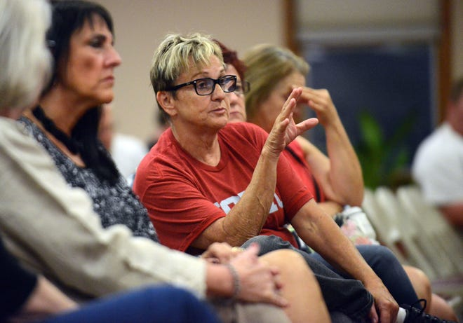 Bev Cook speaks out against lighting Mount Pleasant during a public meeting about the proposal last year at Olivedale Senior Center in Lancaster.