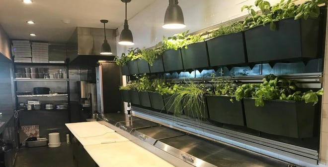 Mr. Crabby's has a new herb garden in its kitchen.