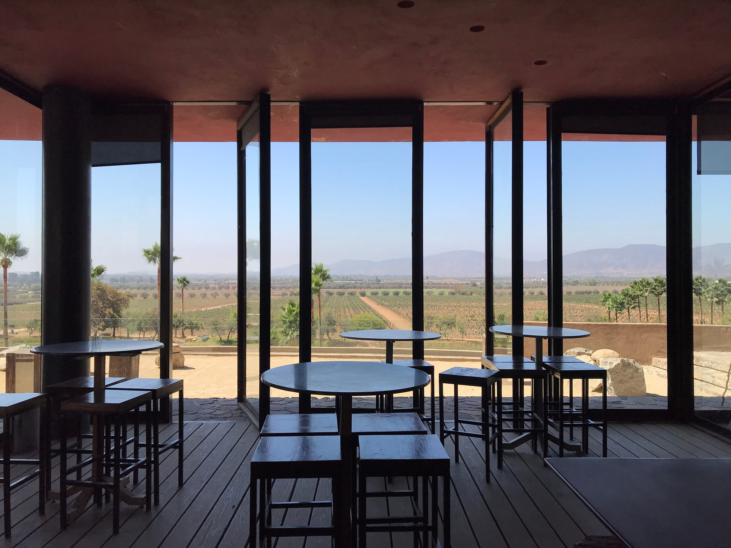 The view from Monte Xanic winery in Baja's Guadalupe Valley