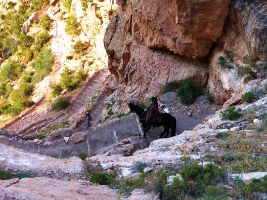 The Arizona Trail crosses the Grand Canyon via the South Kaibab Trail.