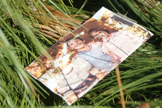 An old photograph was nestled in a fallen pine tree in Two Egg, Fla. on Tuesday, Oct. 16, 2018.