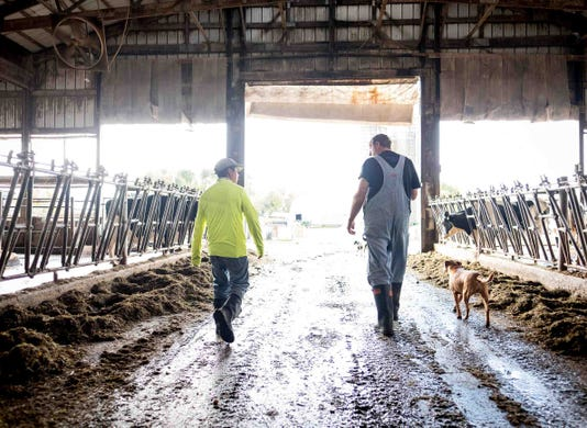 Wcij Dairy Immigration Health Puentes Tecpile Rosenow