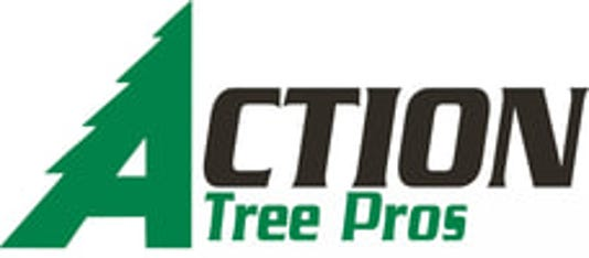 Logo Action Tree Pros