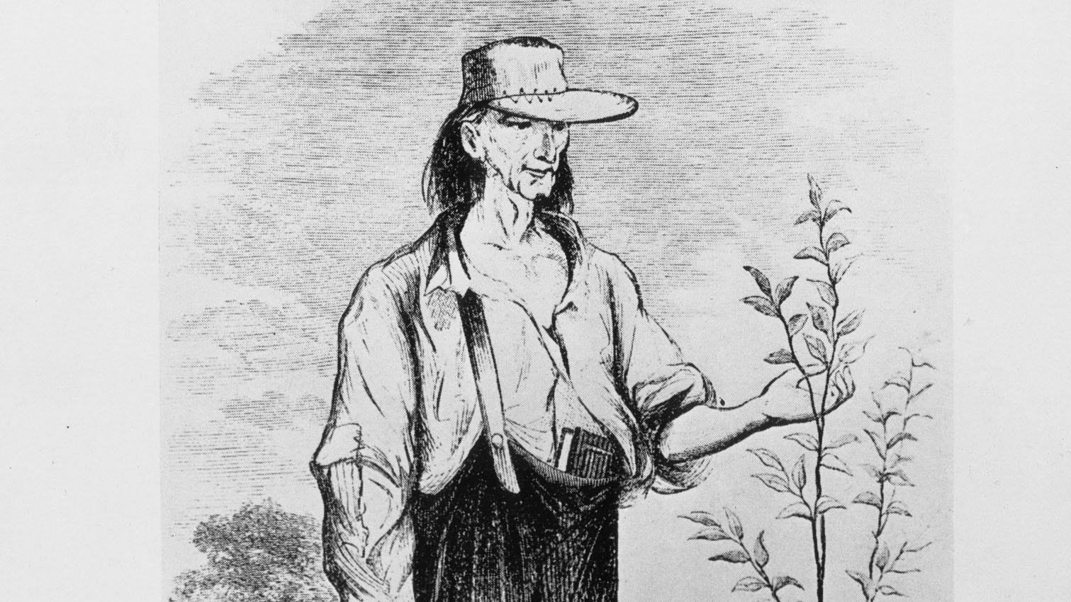 Earliest drawing of Johnny Appleseed