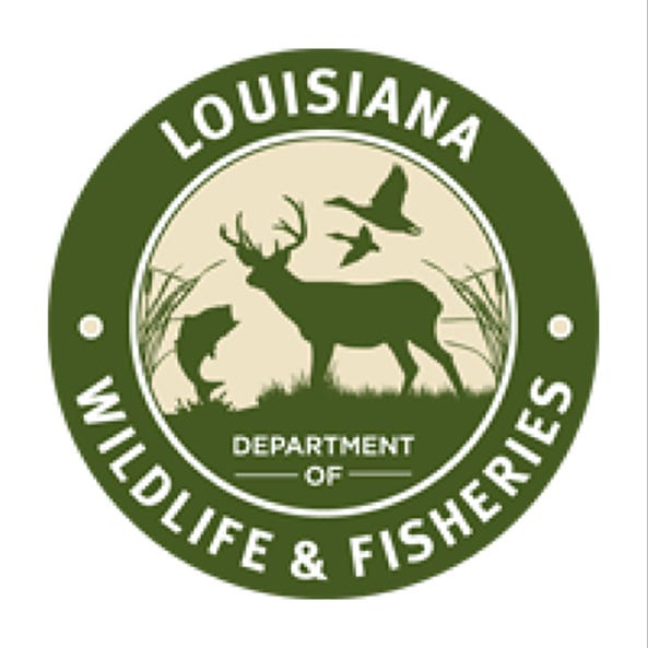 Mississippi men face charges of double limits of redfish in Louisiana