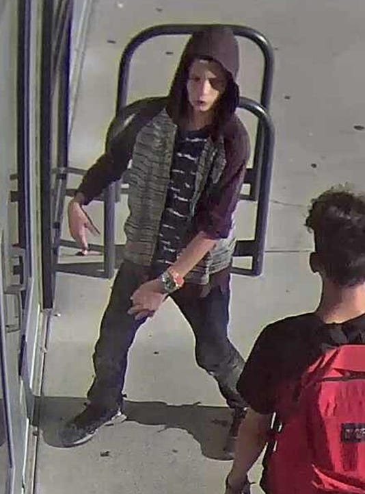 Crime Stoppers Lchs Burglary Pic 1
