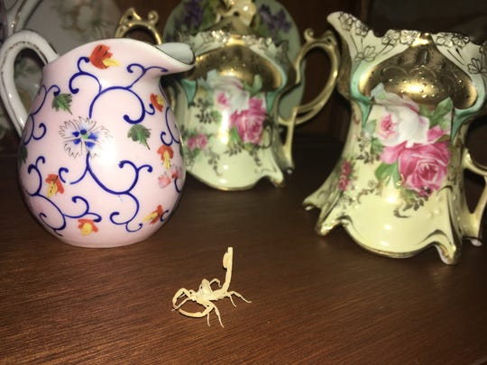 My mother would have appreciated the addition of the scorpion to her china collection.
