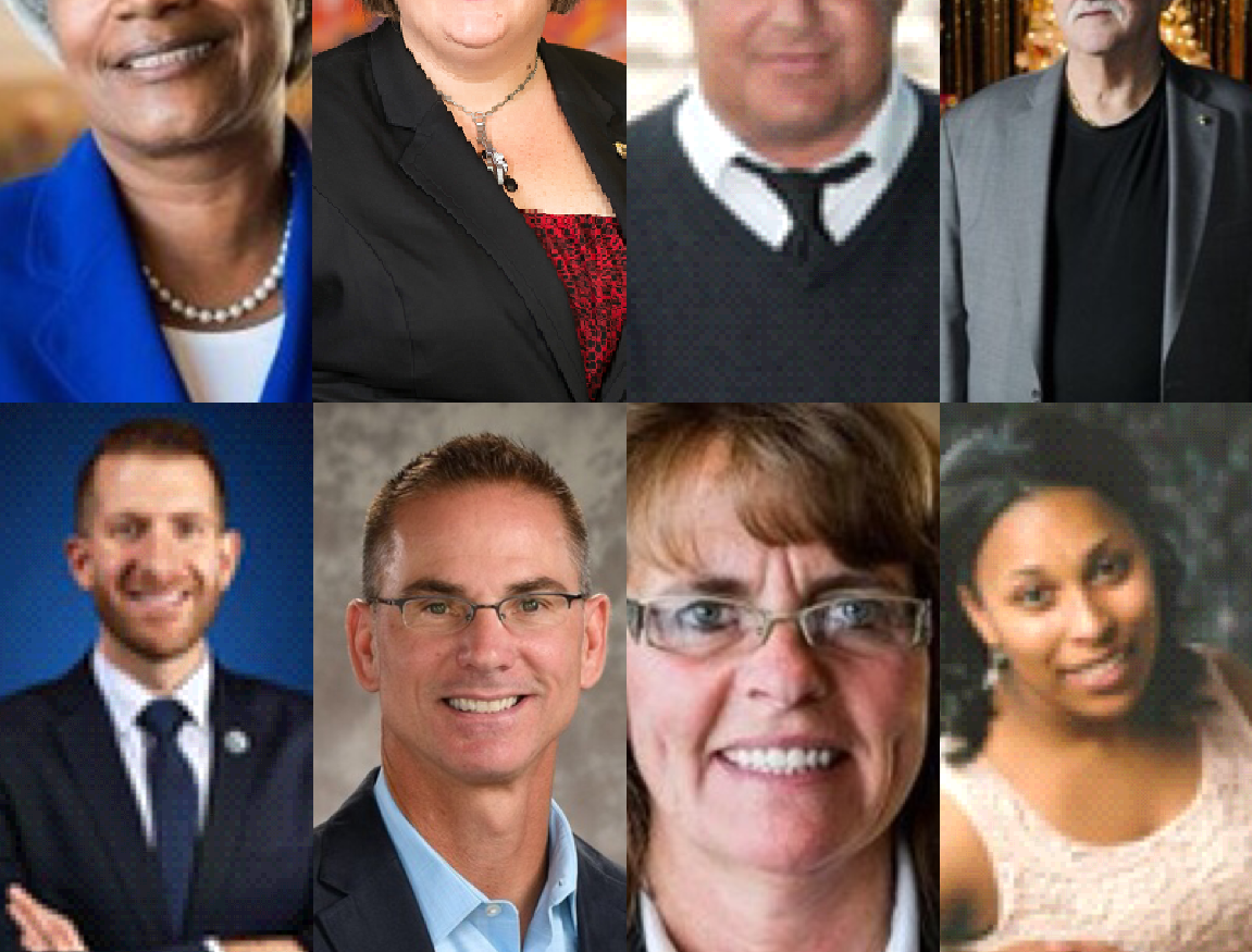8 council candidates vying to join Port Huron's 'good up-hill climb'