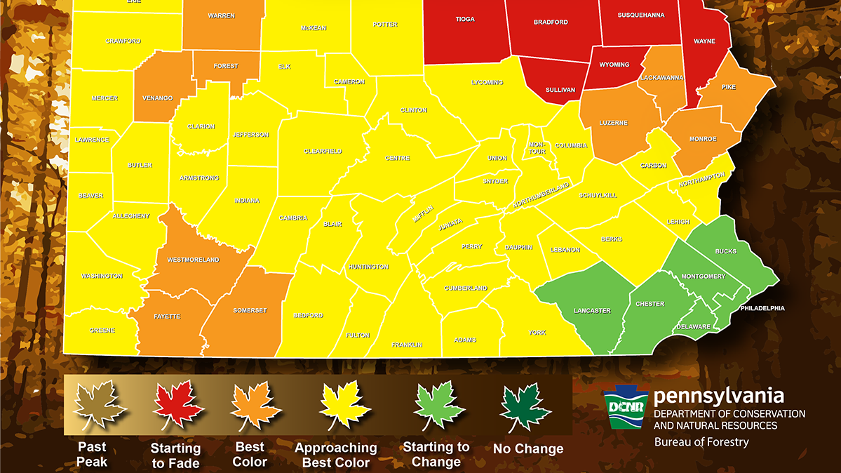 A look at fall foliage in Pennsylvania for the week of Oct. 18-24.