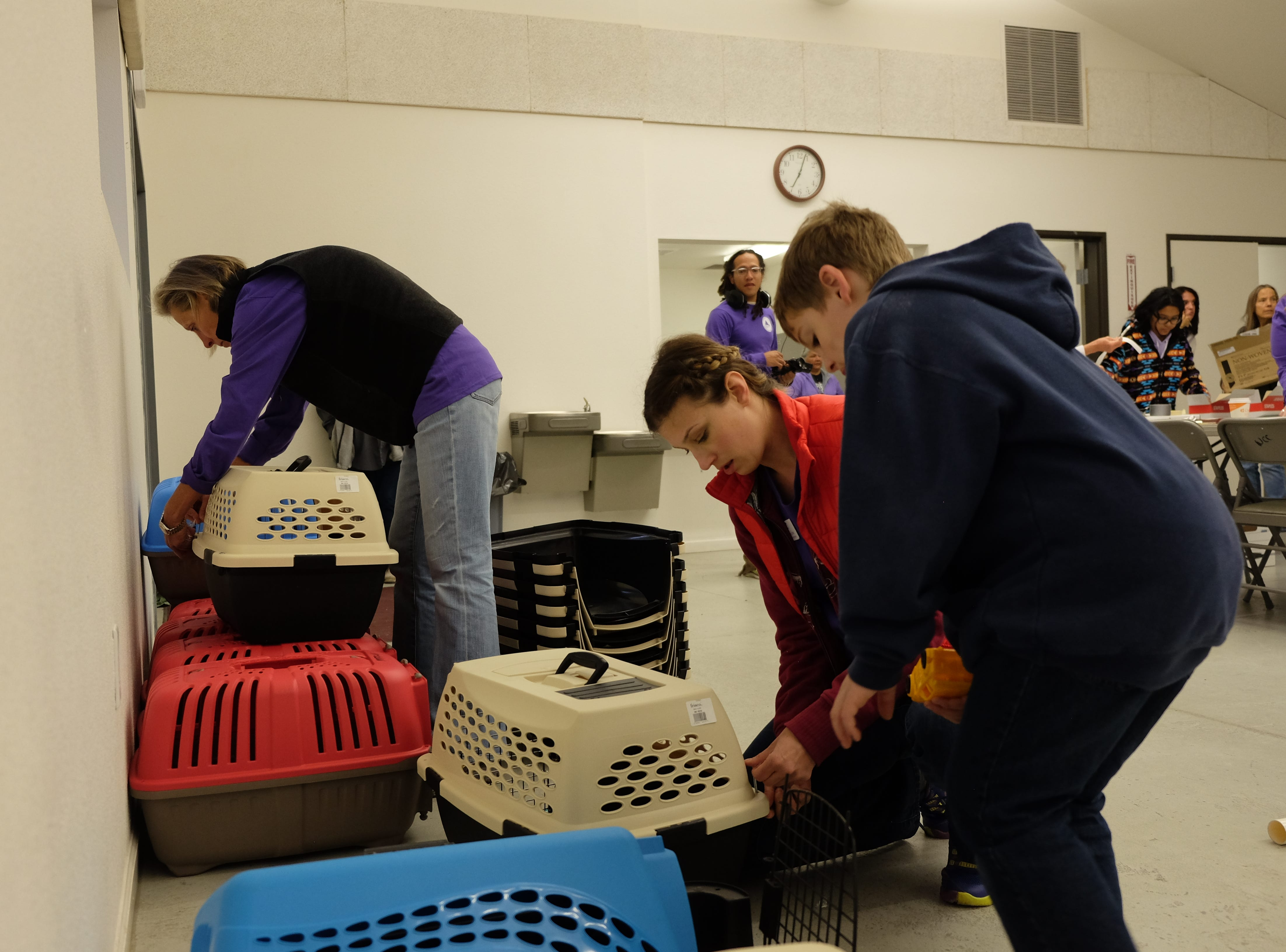 Here's a scene from the Maddie's Pet Project in Nevada Clinic held Oct. 13-14, 2018 in Wadsworth, where 142 cats and dogs were spayed or neutered. Done in collaboration with Nevada Humane Society and the Pyramid Lake Paiute Tribe, the temporary clinic in the Wadsworth Community Center was free for tribal members in Wadsworth, Nixon and Sutcliffe.