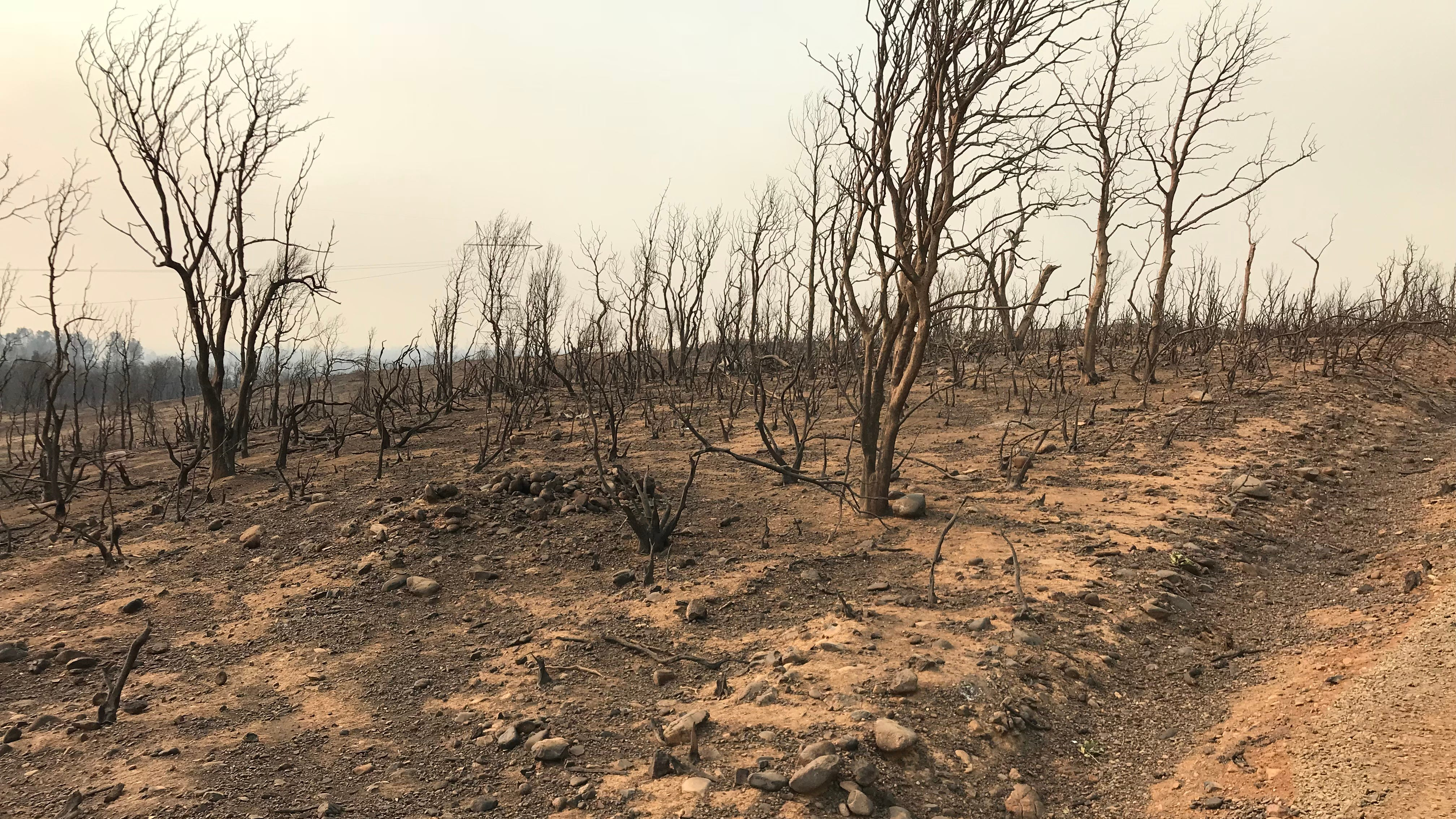 State officials 'racing' to prevent Carr Fire erosion before rains