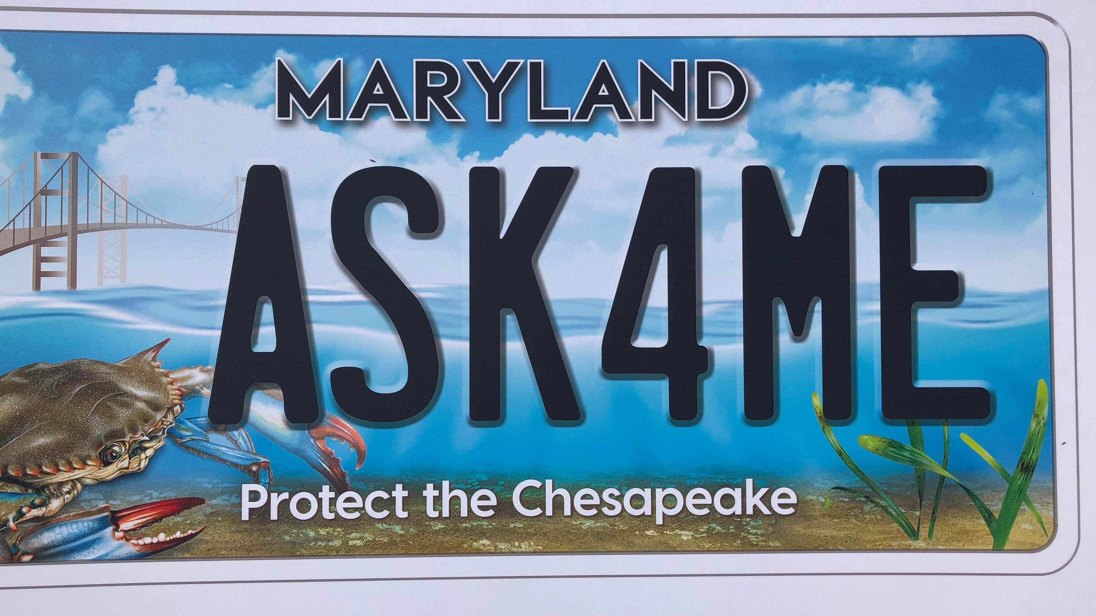 The new Chesapeake Bay license plate will be available for purchase on Oct. 29.