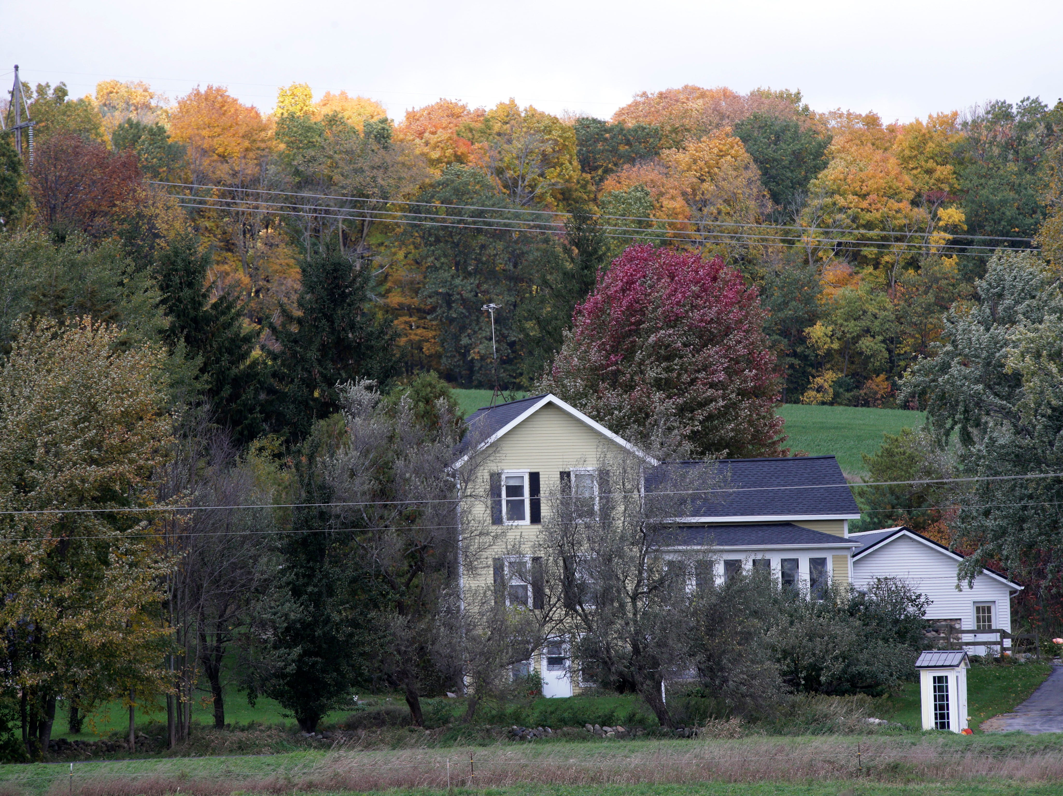 A house is framed by trees turning color along county Road U in the Town of Mitchell, Wis.