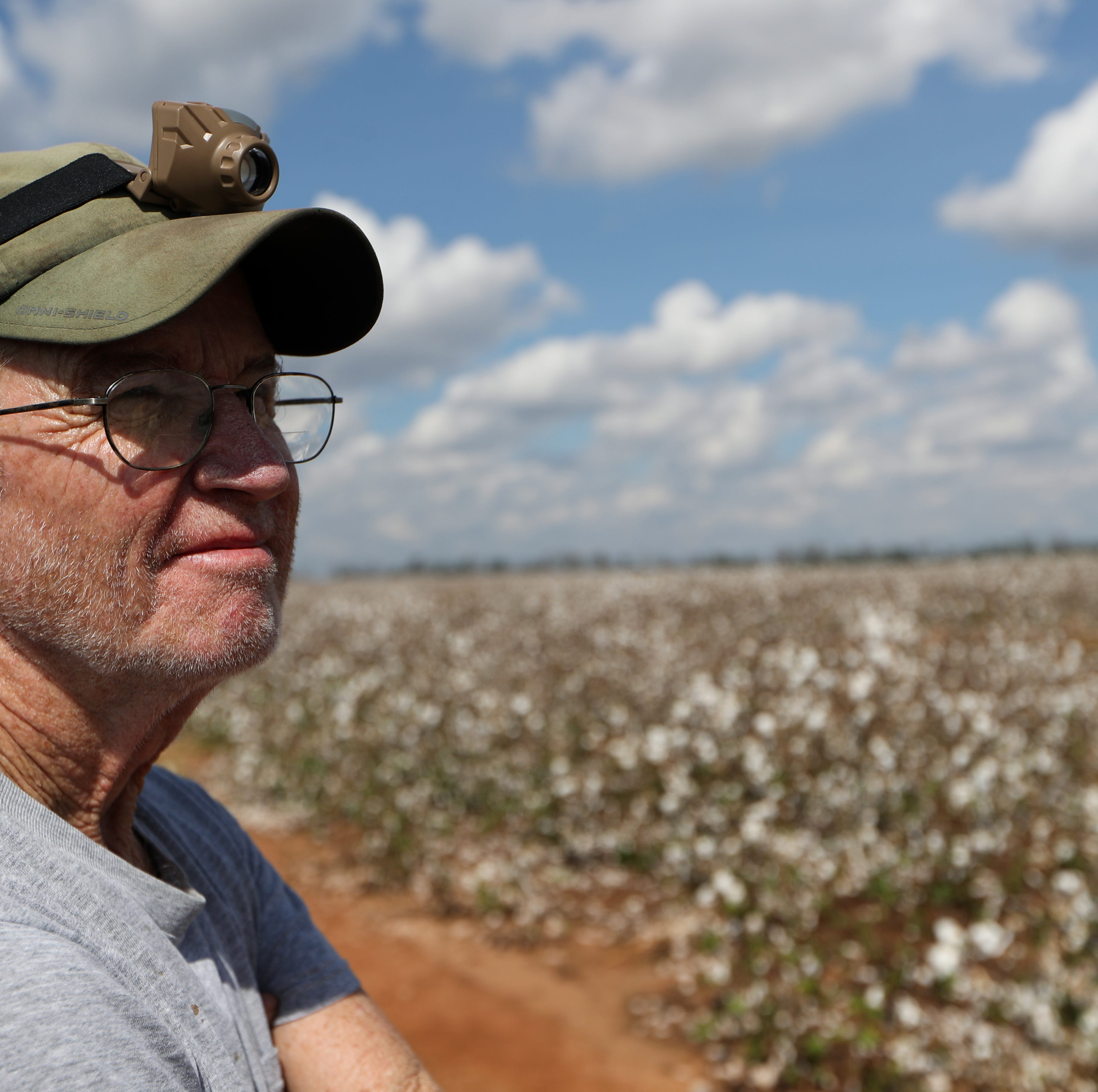 Hurricane Michael struck at the worst time for Florida and Georgia pecan, cotton farmers