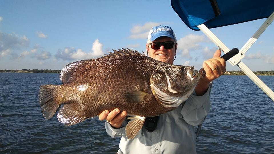 Fishing is good inshore and offshore