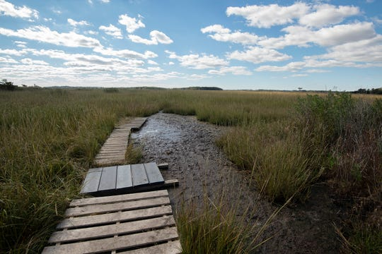 The Marvel Saltmarsh Preserve Boardwalk, near Slaughter Beach, will give pedestrians access into the saltmarsh for scenic and educational purposes.