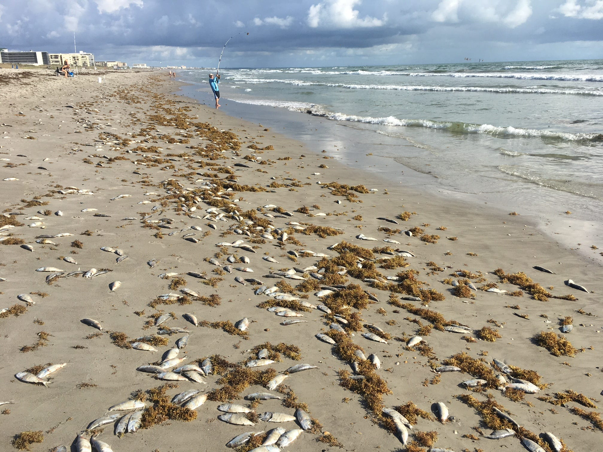 Red tide in Cocoa Beach, Satellite Beach, Melbourne Beach, Indialantic: What we know