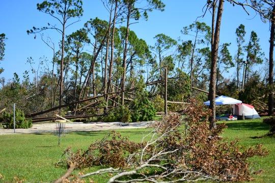 Fallen debris outside of Florida State University Panama City campus after Hurricane Michael.
