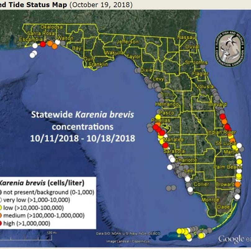 Red tide counts down again in Lee, Collier