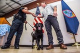 Drug detector dog, Tony, retires from the Guam Customs and Quarantine Agency after sniffing out over $13.4 million of illegal drugs.