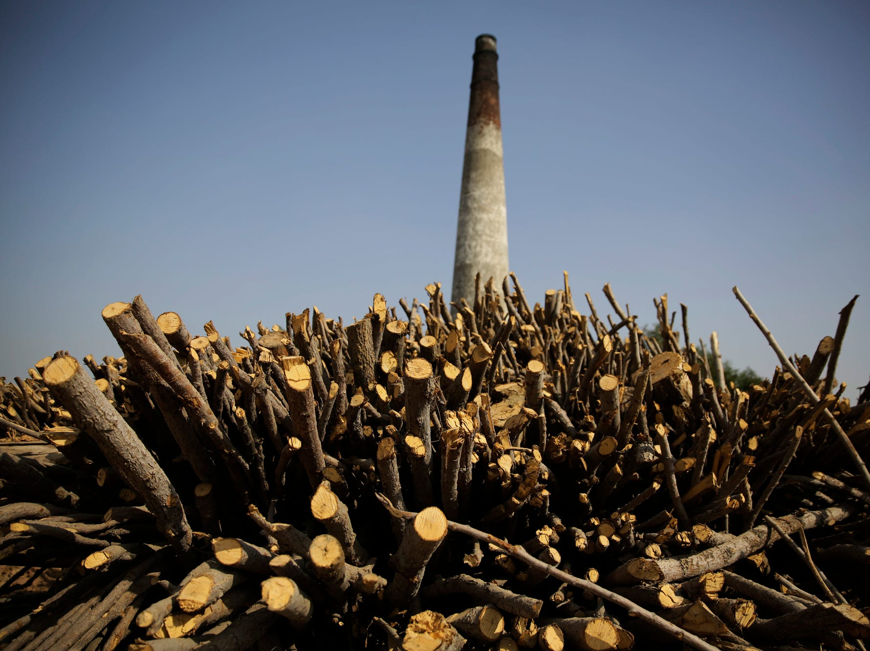 Firewood is stacked up at a closed brick kiln near Mathura, India, Wednesday, Oct. 17, 2018. The Indian capital and large parts of north India gasp for breath for most of the year due to air pollution caused by dust, burning of crops, emissions from factories and the burning of coal and piles of garbage. (AP Photo/Altaf Qadri)