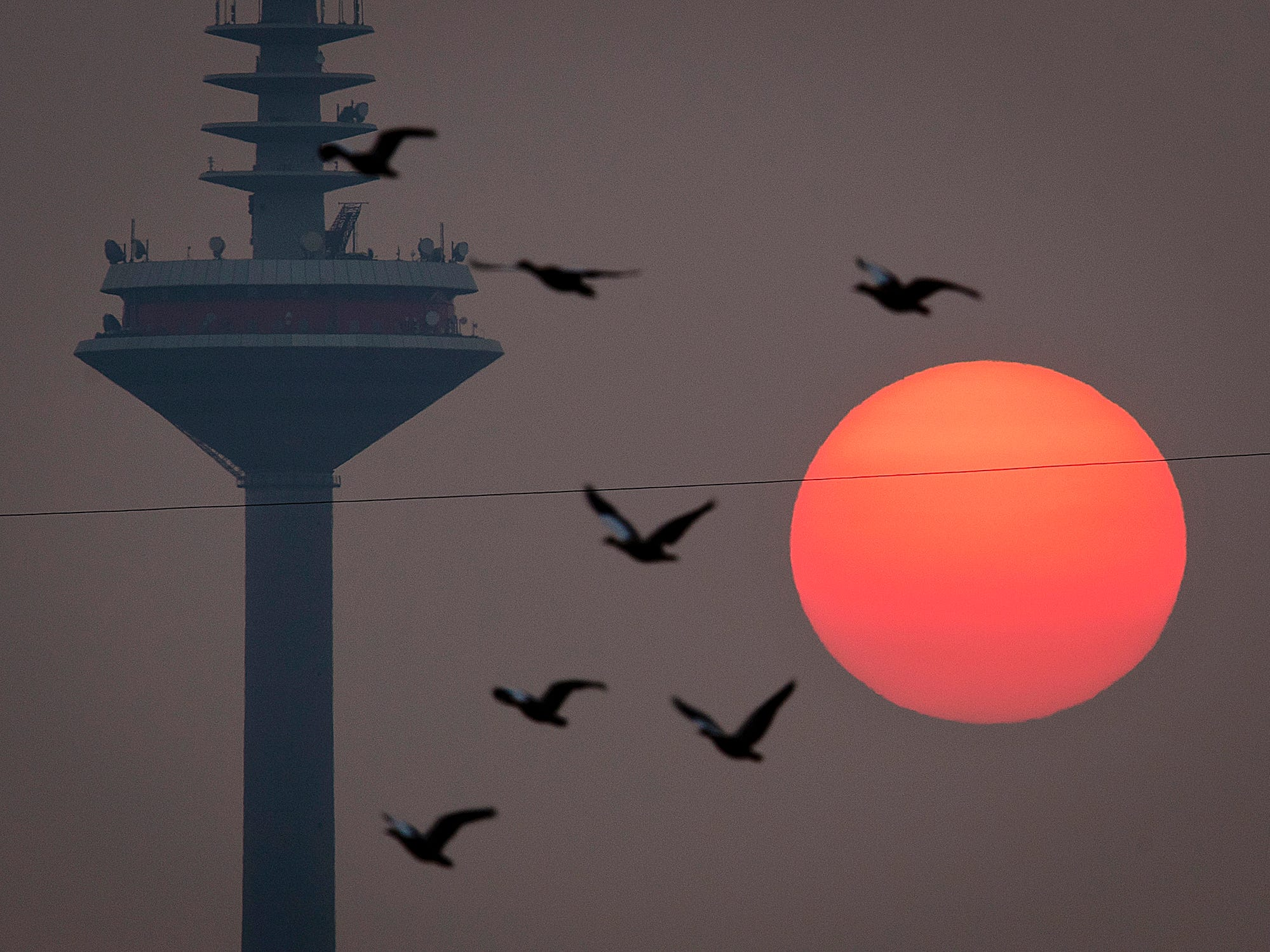 Birds fly by the rising sun and the television tower in Frankfurt, Germany, on a hazy Friday, Oct. 19, 2018. (AP Photo/Michael Probst)