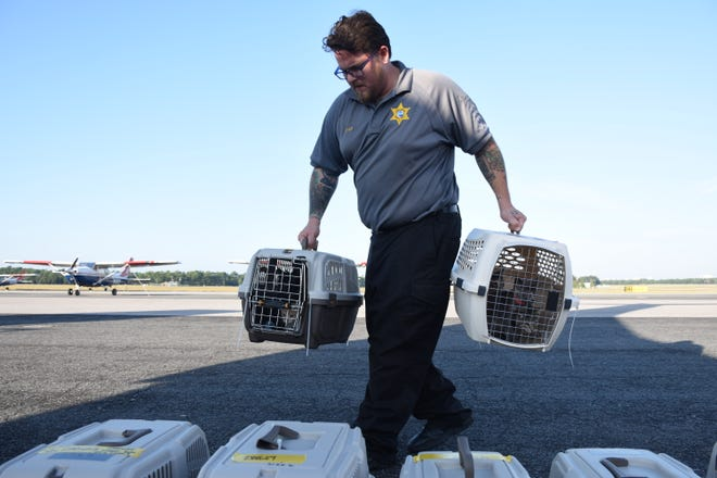 Ramone Rios, an animal control officer with Escambia County Animal Services, gets cats ready for transport on Friday, Oct. 19, 2018. Escambia County Animal Services arranged to transport 205 cats and 20 dogs from Pensacola to Portland, Oregon and Seattle, Washington. The animals had been in shelters in Bay and Gulf Counties, two areas hit hard by Hurricane Michael.