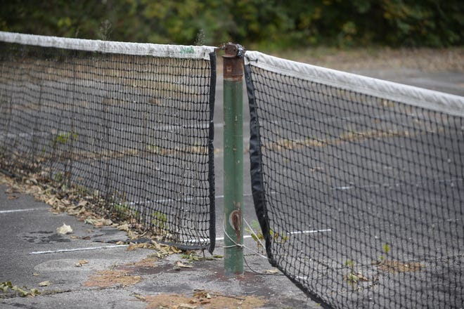A group of local enthusiasts wants to turn covert the tennis courts at Clear Creek Park into pickleball courts.