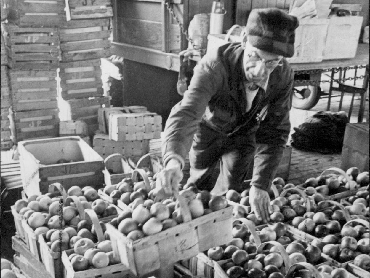In this 1965 photo, James Padellaro puts the final touches on his apple display at the Rochester Public Market.