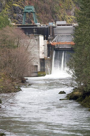 The North Santiam River below Big Cliff Dam near Mill City is know to steelhead anglers as a great spot for wrangling the fish.