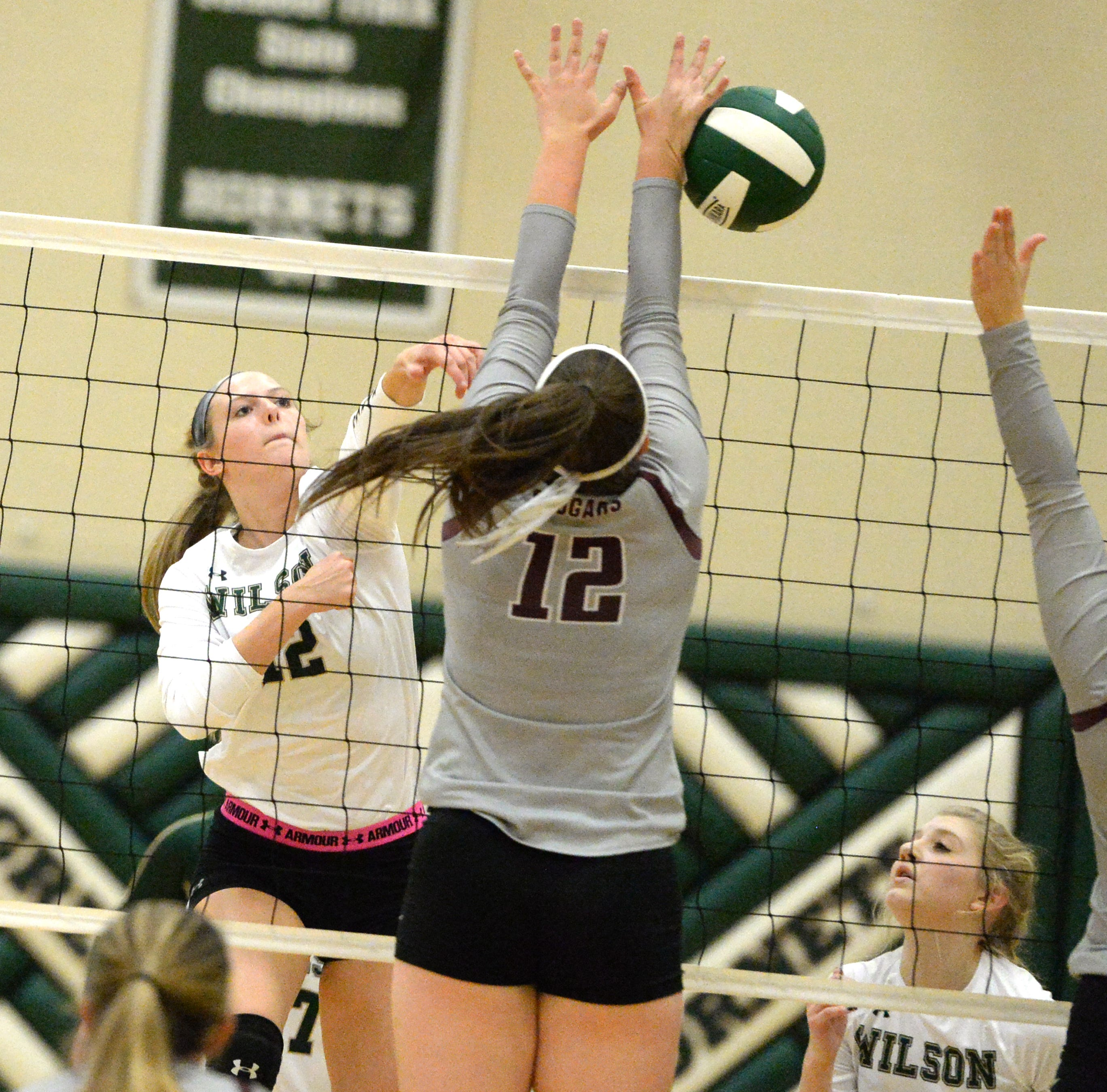 Wilson Memorial claims district volleyball title
