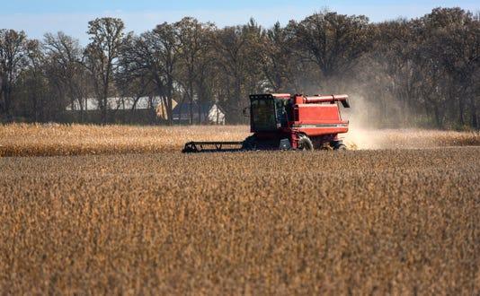 Wa Fall Harvest 1
